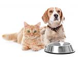 Gutes Futter für ihr Haustier