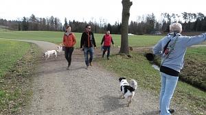 Hundespaziergang März 2019