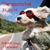 Zweiter Fellnasentransport