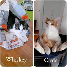 Whiskey und Clyde