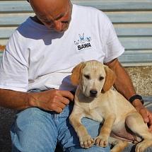 Zoe in Santorini